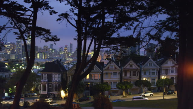 Ascending Aerial Shot Alamo Square and the Painted Ladies, San Francisco video