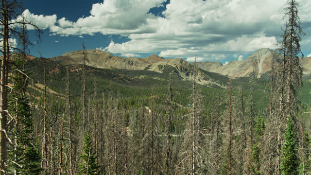 Ascending Drone Shot of Eastern Slope of Monarch Pass