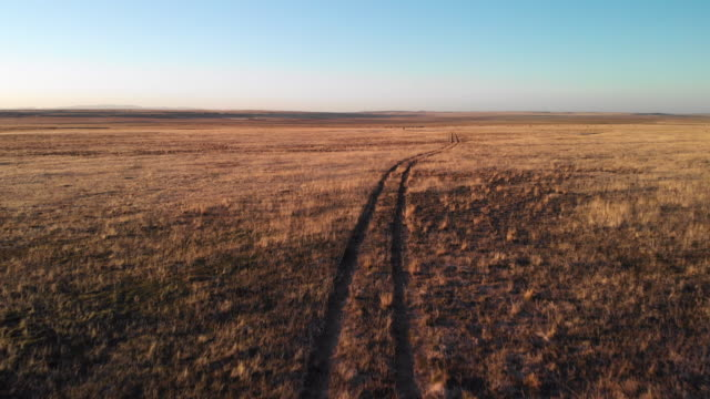 ascending trucking forward aerial drone shot of a pair of tire tracks running through a desert plain in utah under a clear, blue sky at sunset/sunrise - grass isolated video stock e b–roll