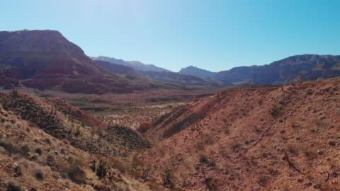 ascendente camioning in avanti drone aereo colpo di joshua trees in una valle desertica dello utah con montagne sullo sfondo sotto un cielo chiaro e blu - composizione orizzontale video stock e b–roll