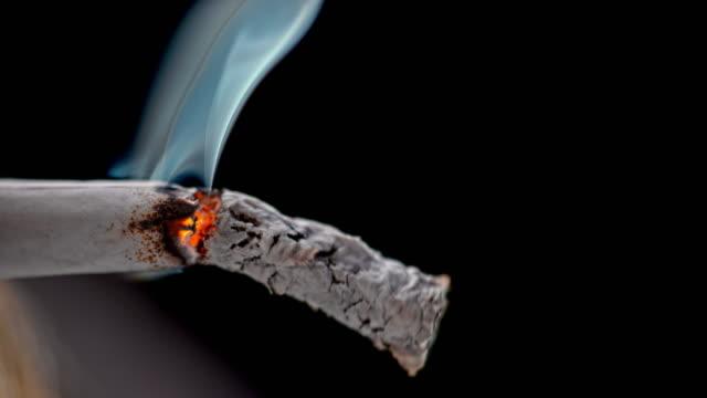 vídeos de stock e filmes b-roll de slo mo ld ash falling off a burning cigarette - cinza