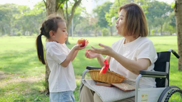 asia granddaughter took fruits basket to grandmother sit on the wheelchair at the park.slow motion - nonna e nipote camminare video stock e b–roll