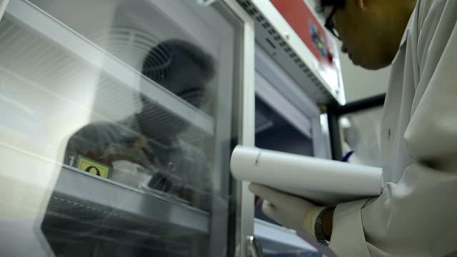 asien medizinische techniker frau beim qualität kontrolle der blut tasche befinden kühlschrank in labor krankenhaus - medizinexamen stock-videos und b-roll-filmmaterial