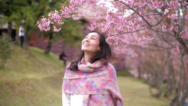 asia donna in piedi in fiore di ciliegio al parco - woman portrait forest video stock e b–roll