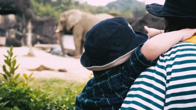 vidéos et rushes de asiatique bébé garçon et mère voyage dans zoo - zoo