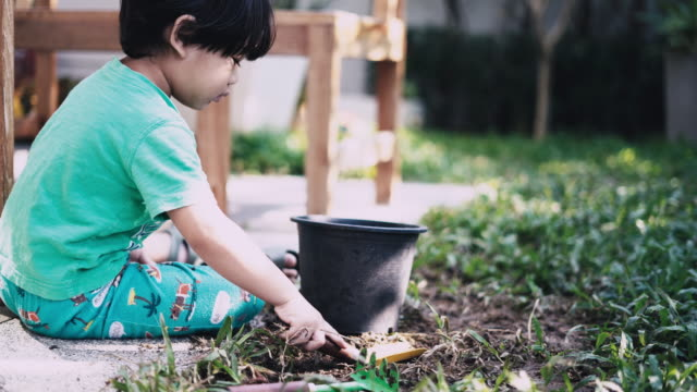 Asian Boy Dig the soil in the garden video