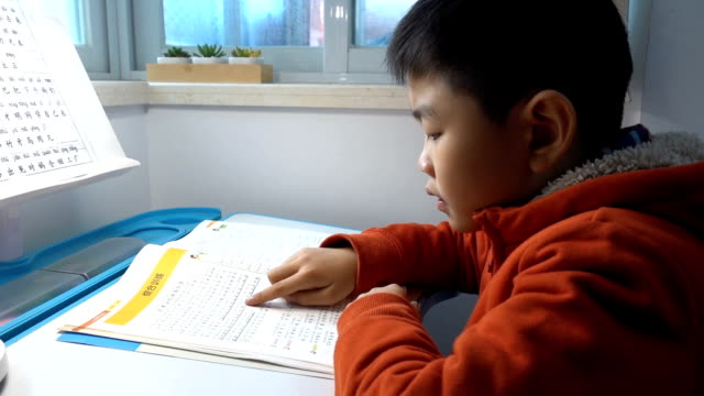 Asiatique garçon étudiant à la maison - Vidéo