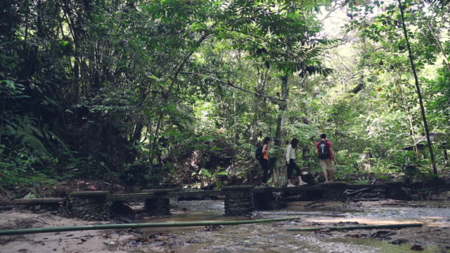 stockvideo's en b-roll-footage met 3 aziatische chinese vrienden die in het bos lopen dat een brug op de trekking van de rivierjungle kruist - er even tussenuit