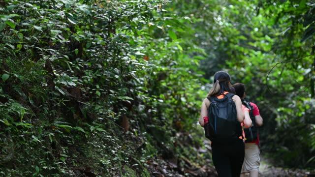 stockvideo's en b-roll-footage met 3 aziatische chinese vrienden die in de wildernis lopen die onderzoekt - er even tussenuit