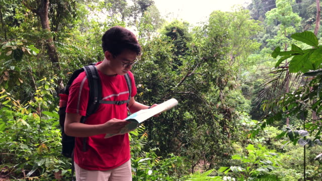 Asian chinese smiling young man looking at map in the rainforest jungle