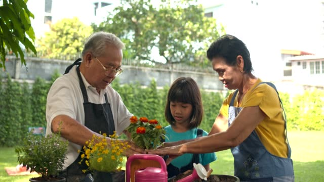 Asian couple senior teach granddaughter to planting flower to pot in home garden.