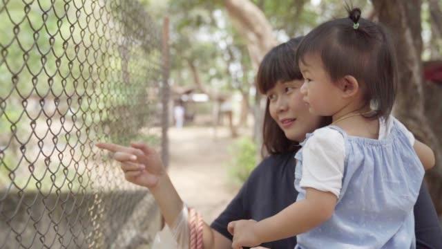 asiatische niedlichen kleinkind mädchen mit mutter im öffentlichen park hintergrund genießen. - bedrohte tierart stock-videos und b-roll-filmmaterial