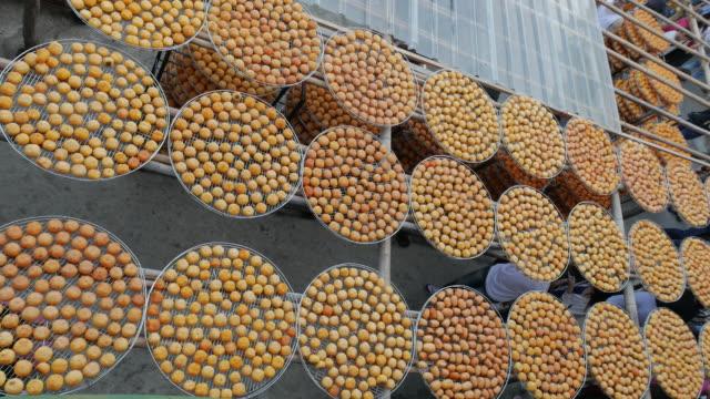 vídeos de stock e filmes b-roll de asian dried persimmon fruits under sun in hsinpu, taiwan - diospiro