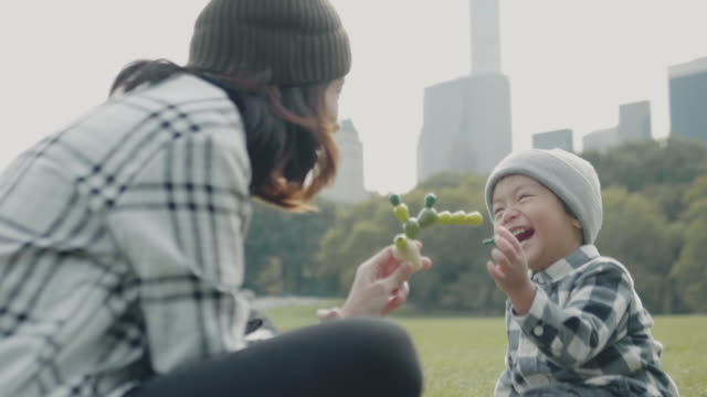 Asian family in Central Park, NYC Asian baby boys playing toys with his young mother in Central Park, Manhattan, New York, USA central park manhattan stock videos & royalty-free footage