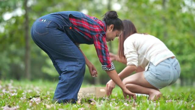 Asian family picking fallen flowers on flloor in park