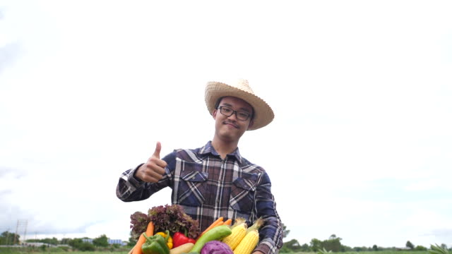 Asian farmers raise various vegetable crates and smile to the camera. video