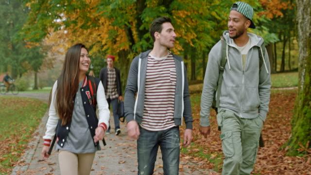 アジアの女子学生 2 の男性友達と公園を通って歩いて、彼らとチャット - スロベニア点の映像素材/bロール