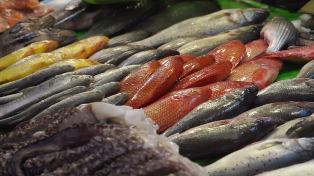 Asian fresh fishes, seafood selling in Taiwan water market video