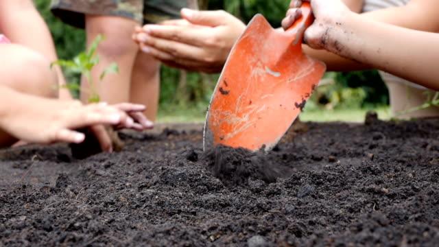 アジアの女の子のために掘りは、土地に植える苗木を準備します。エコ環境保全概念 - ガーデニング点の映像素材/bロール