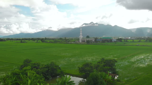 Asian Grass field and Muslim mosque on the sunny day, aerial drone shot, 4k resolution, sunlight