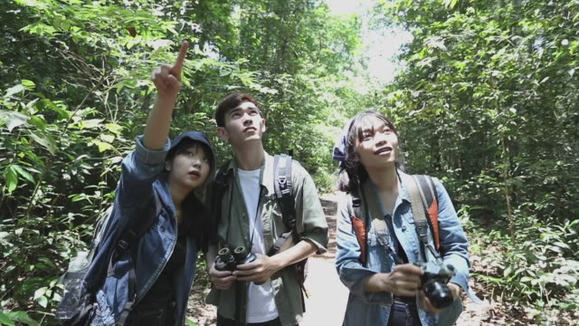 Asian Group of young people Hiking with friends backpacks walking together and looking map and taking photo camera by the road and looking happy ,Relax time on holiday concept travel video