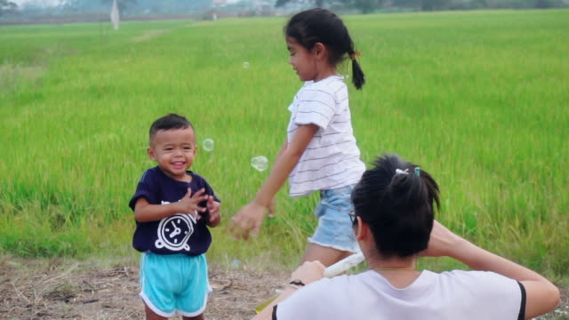 Asian kids laughing and having fun wiht family in a summer green paddy field blowing bubbles - vídeo