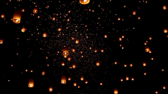Asian lanterns in lantern festival Asian lanterns in the international lantern festival. chinese new year stock videos & royalty-free footage