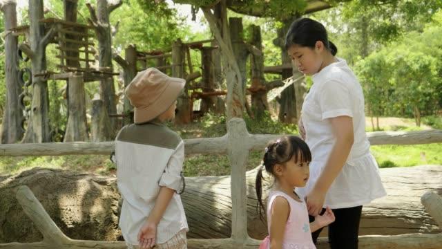 アジアの小さな旅行は動物を探しています - 動物園点の映像素材/bロール