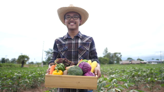 Asian Male farmer holding a box of organic vegetables give to his customer - video