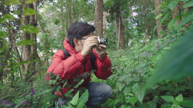 Asian man using film camera to take pictures of flower in the nature video