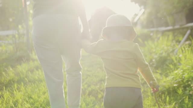 madre asiatica che cammina e tiene la mano con il suo bambino in fattoria al tramonto. - giardino pubblico giardino video stock e b–roll