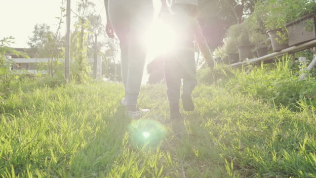 vídeos de stock e filmes b-roll de asian mother walking and holding hand with her little boy in farm at sunnset. - feet hand
