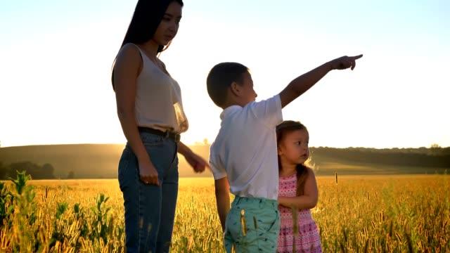 子供とアジアの母は、夏にフィールドを歩いている、何かにポイント、家族の概念、側面図 - 支えられた点の映像素材/bロール