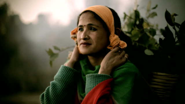 Asian people: A rural Nepali woman Looking away with smile video