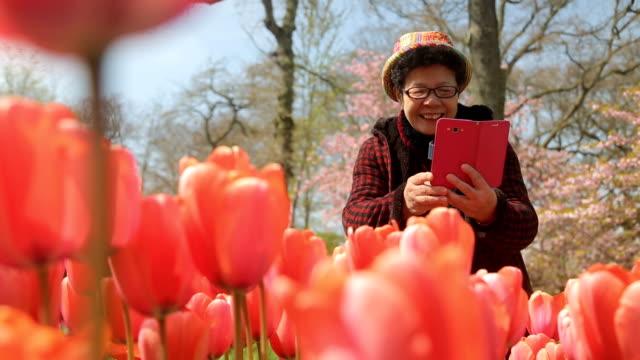 Asian people using smartphone for take tulip flower in Keukenhof.