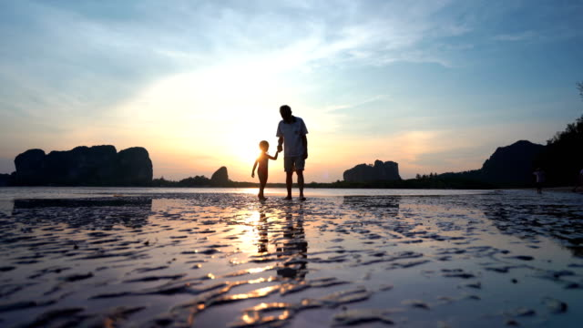 Asian Senior men with granddaughter playing on beach