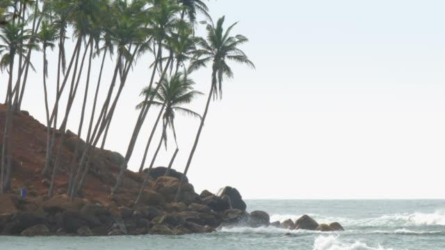 asian shore with long thin palm trees near waving blue sea - длина стоковые видео и кадры b-roll
