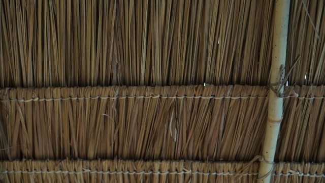 Asian traditional grass straw roof construction design from inside video