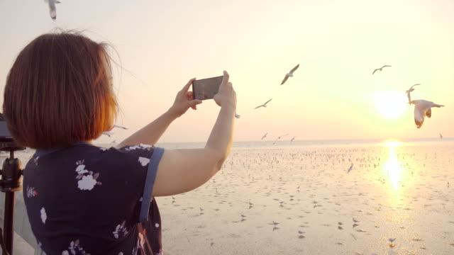 アジアの女性とかもめ橋の上 - バードウォッチング点の映像素材/bロール