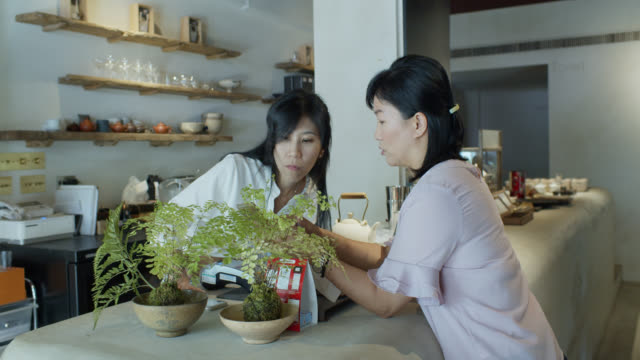 asian woman chatting with owner in taipei tea room - tea cup stock videos & royalty-free footage