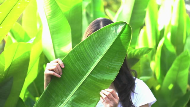 asian woman hiding her expression behind tropical leaf. secret reveal concept - donna si nasconde video stock e b–roll