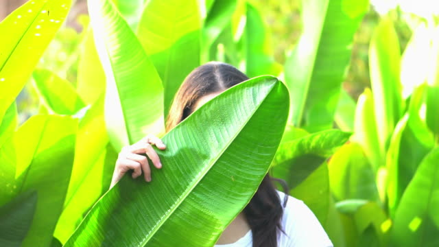 asian woman hiding her expression behind tropical leaf. smile and happy emotion management concept - donna si nasconde video stock e b–roll