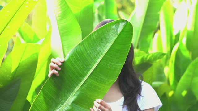 asian woman hiding her expression behind tropical leaf. upset and angry, emotion management concept - donna si nasconde video stock e b–roll