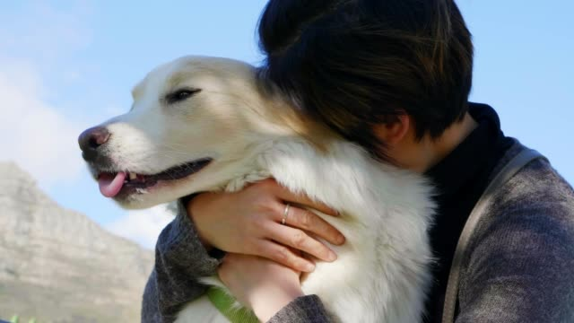 asian woman hugging her dog - border collie video stock e b–roll