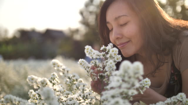 asian woman smelling on flowers with sunset - woman portrait forest video stock e b–roll