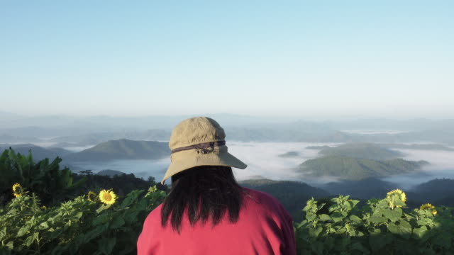 asian woman traveler sitting on rock looking at sunrise mountain view.tilt up - powojnik pnący filmów i materiałów b-roll