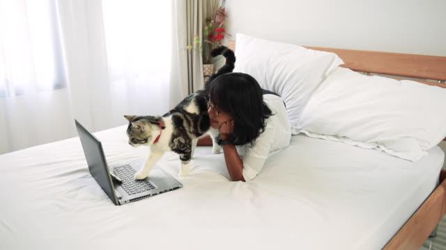 asiatisk kvinna använder laptop medan hennes katt leker runt på vita sängen. - katt inomhus bildbanksvideor och videomaterial från bakom kulisserna