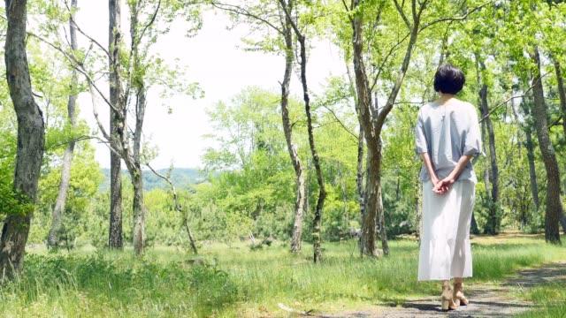 asian woman walking in forest - woman portrait forest video stock e b–roll