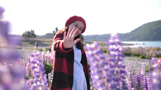 asian woman waving hands hello saying with lupine flower in new zealand - separacja filmów i materiałów b-roll