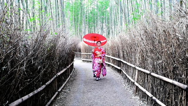 Asian woman wearing japanese traditional kimono at Bamboo Forest in Kyoto, Japan. video